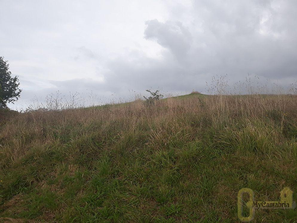For sale of land in Polanco