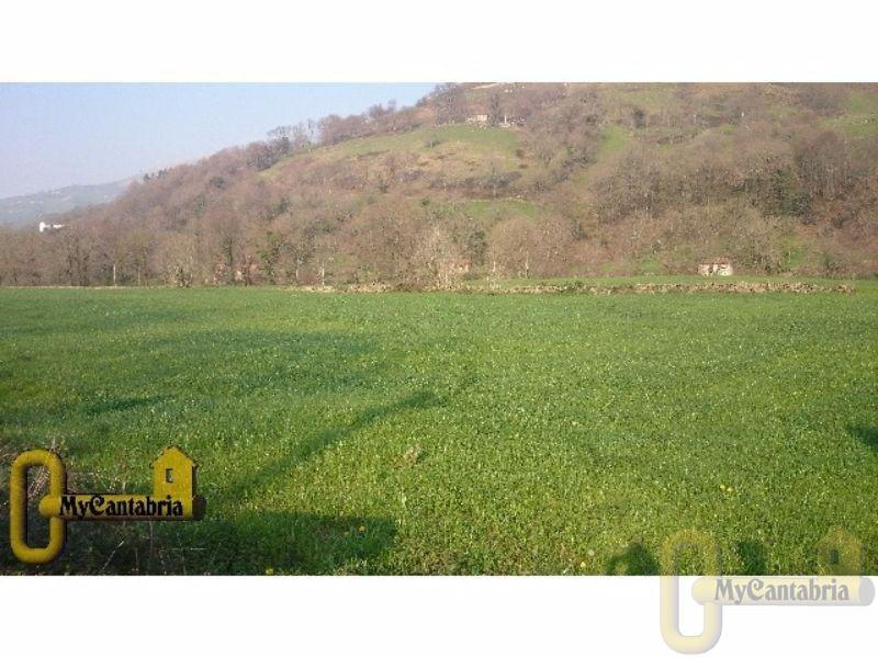 For sale of land in Selaya