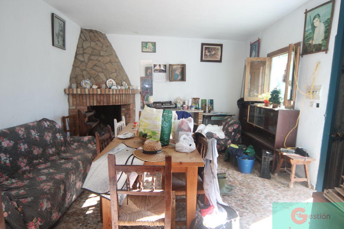 Venta de finca rústica en Salobreña