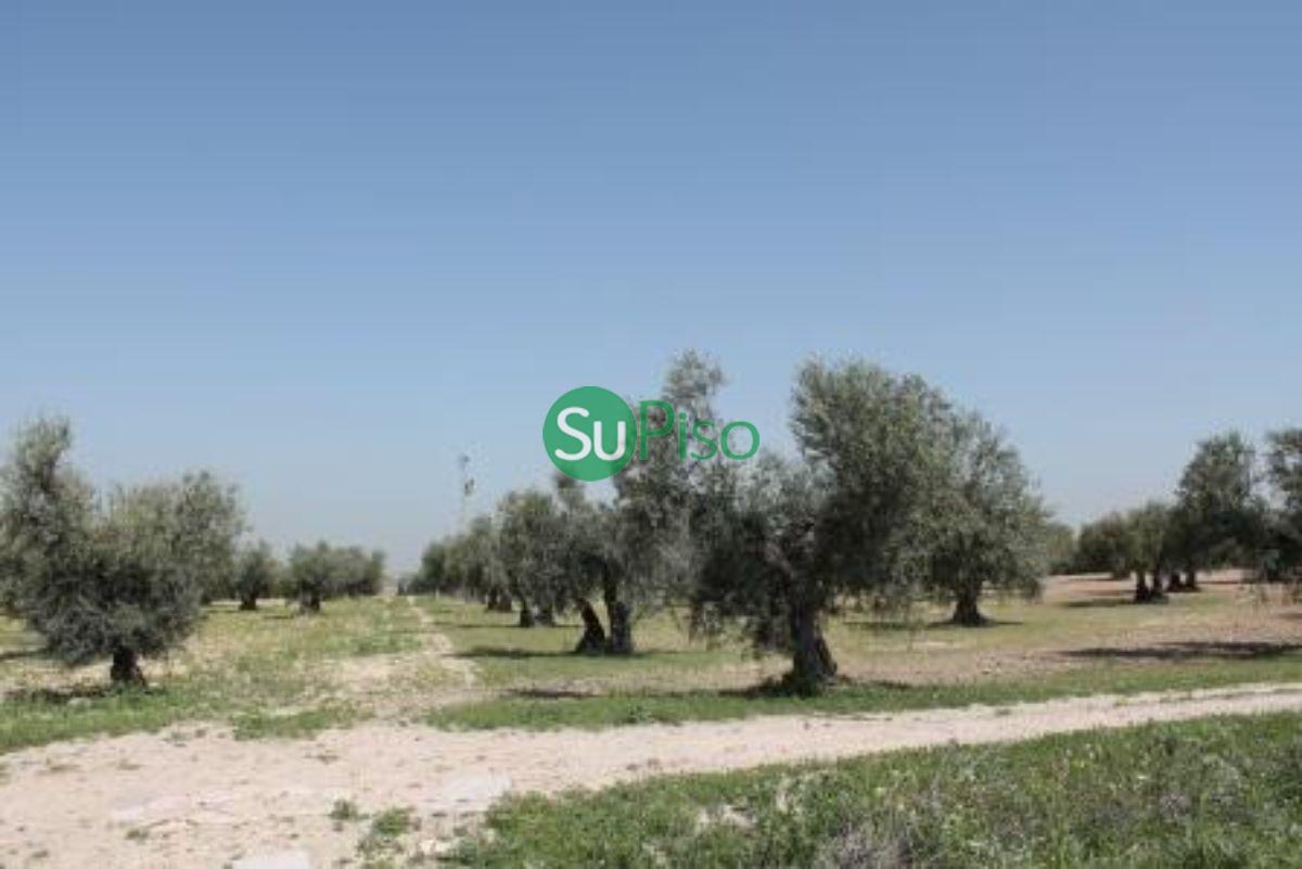 For sale of rural property in Yeles