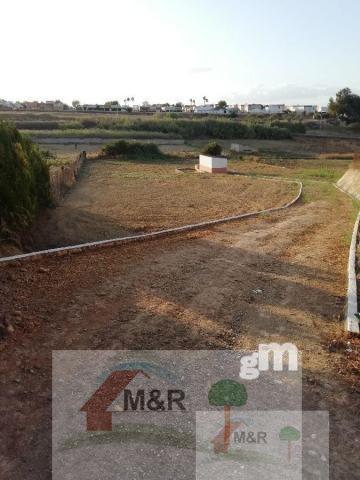 For sale of rural property in Olivares