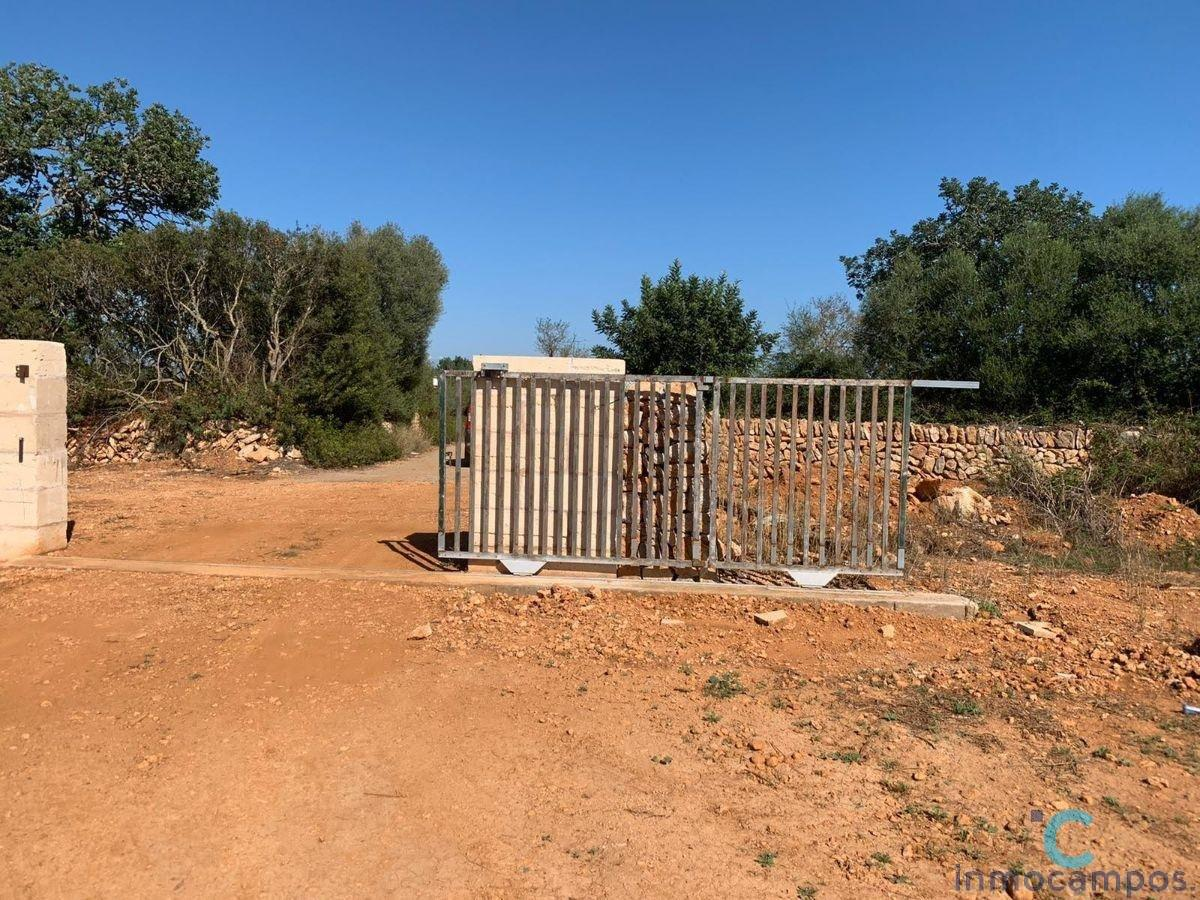 For sale of land in Campos