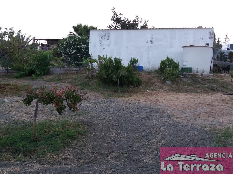 Venta de finca rústica en Estepona