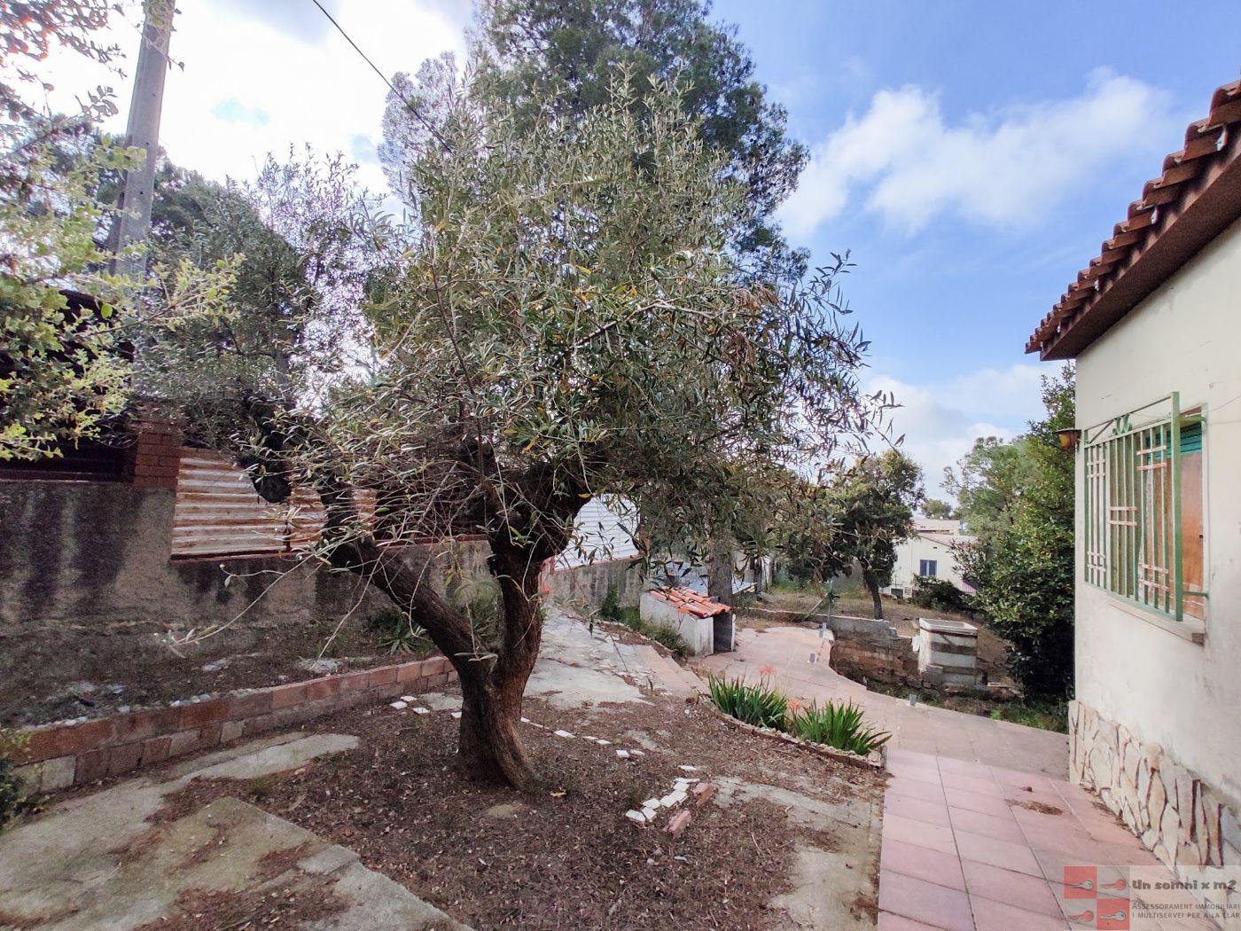 For sale of house in Piera