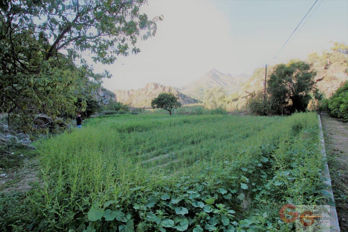 Venta de terreno en Vélez de Benaudalla