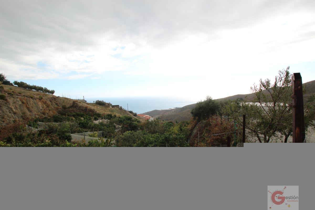 For sale of rural property in Rubite