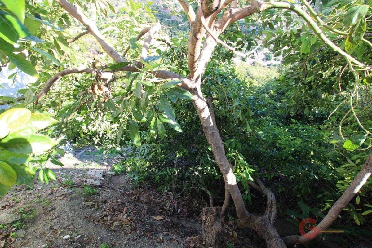 Venta de terreno en Guájar Fondón