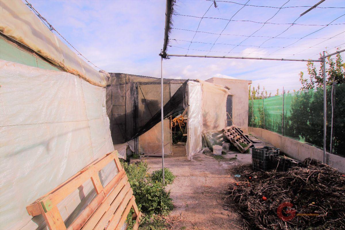 For sale of land in Torrenueva