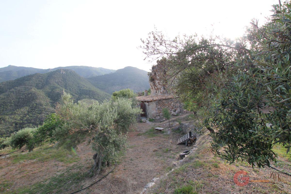 Venta de finca rústica en Guájar Faragüit