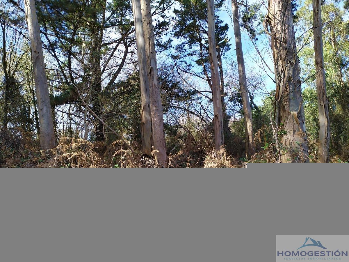 For sale of land in Barrika