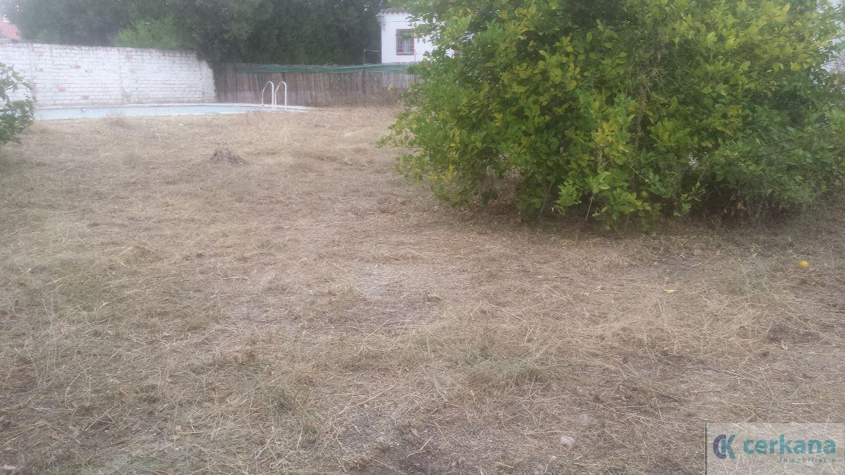 For sale of land in Gines