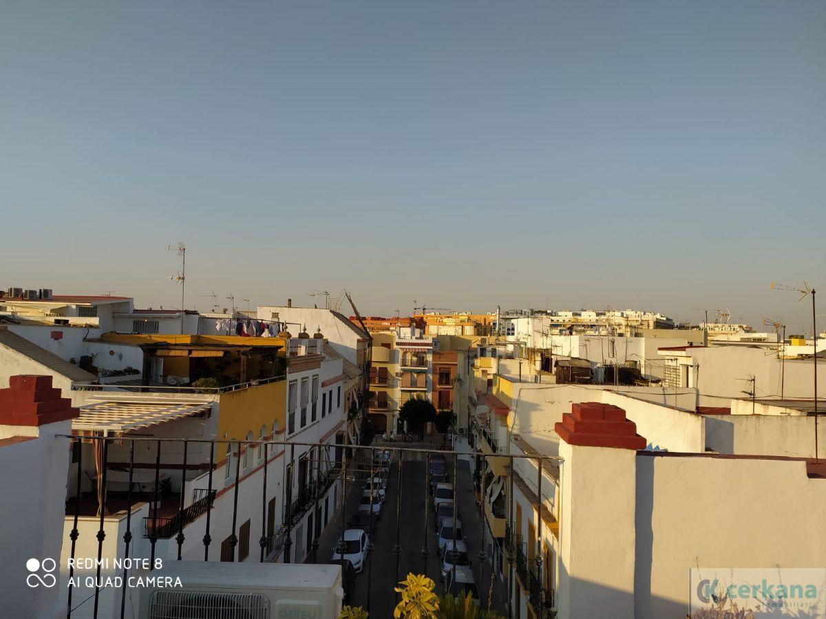 Alquiler de estudio en Sevilla