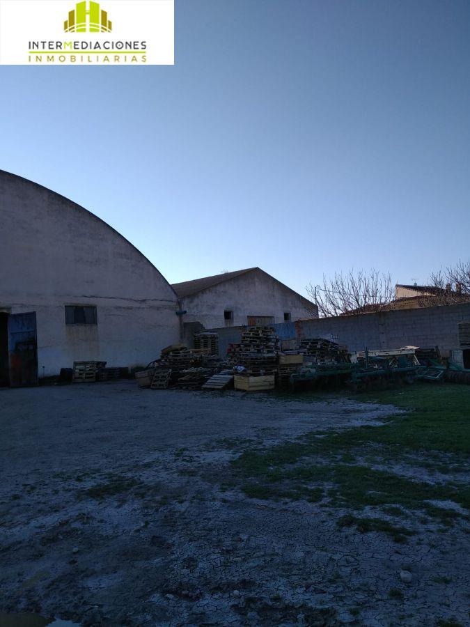 For rent of industrial plant/warehouse in Casas de Juan Núñez