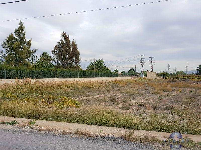 For sale of land in Novelda