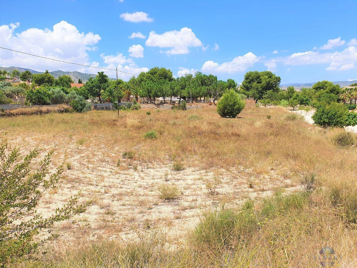 Venta de terreno en Monóvar-Monòver