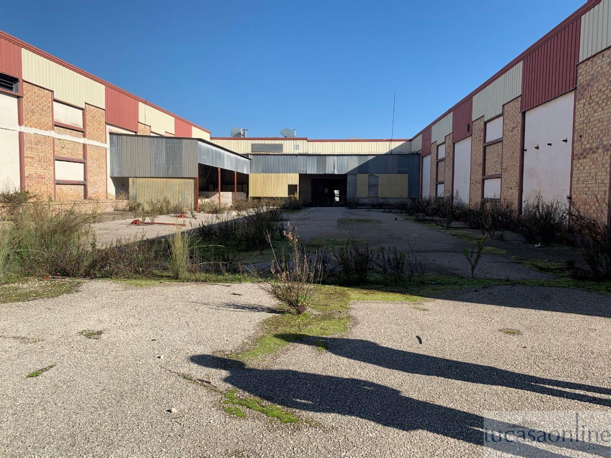 For sale of industrial plant/warehouse in Jerez de la Frontera