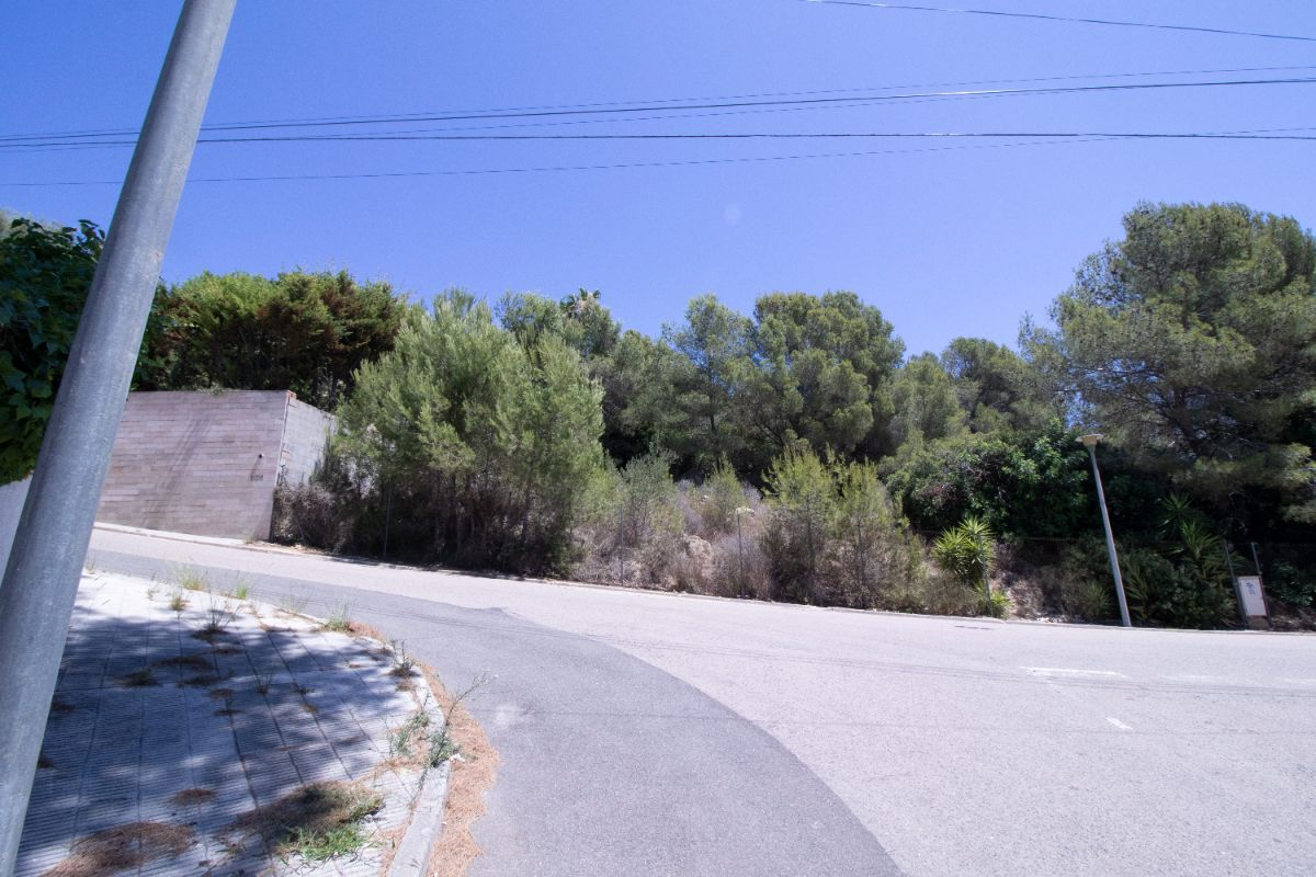 For sale of land in Coma - Ruga
