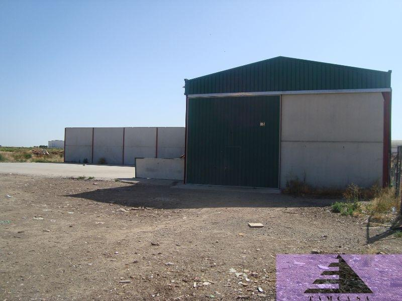 For sale of land in Cabañas de Yepes