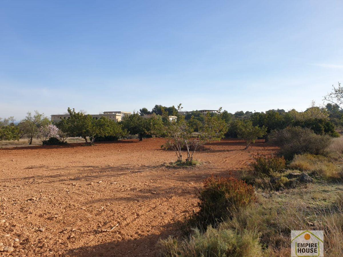 For sale of land in Cheste