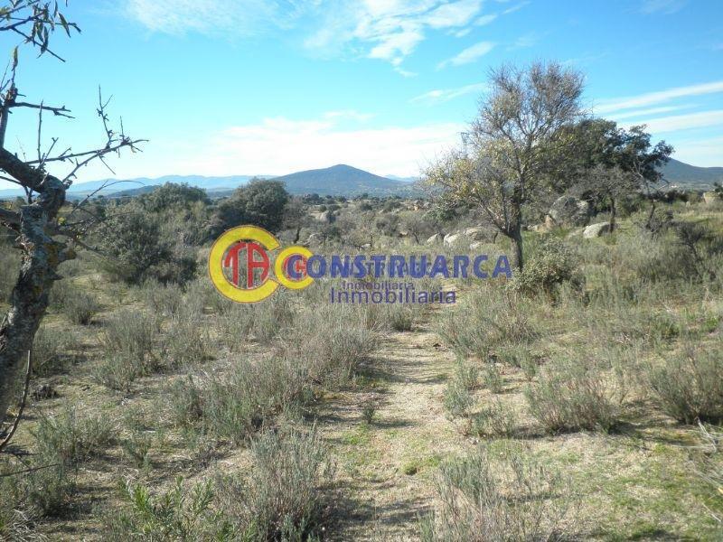 Venta de terreno en Aldeanueva de Barbarroya
