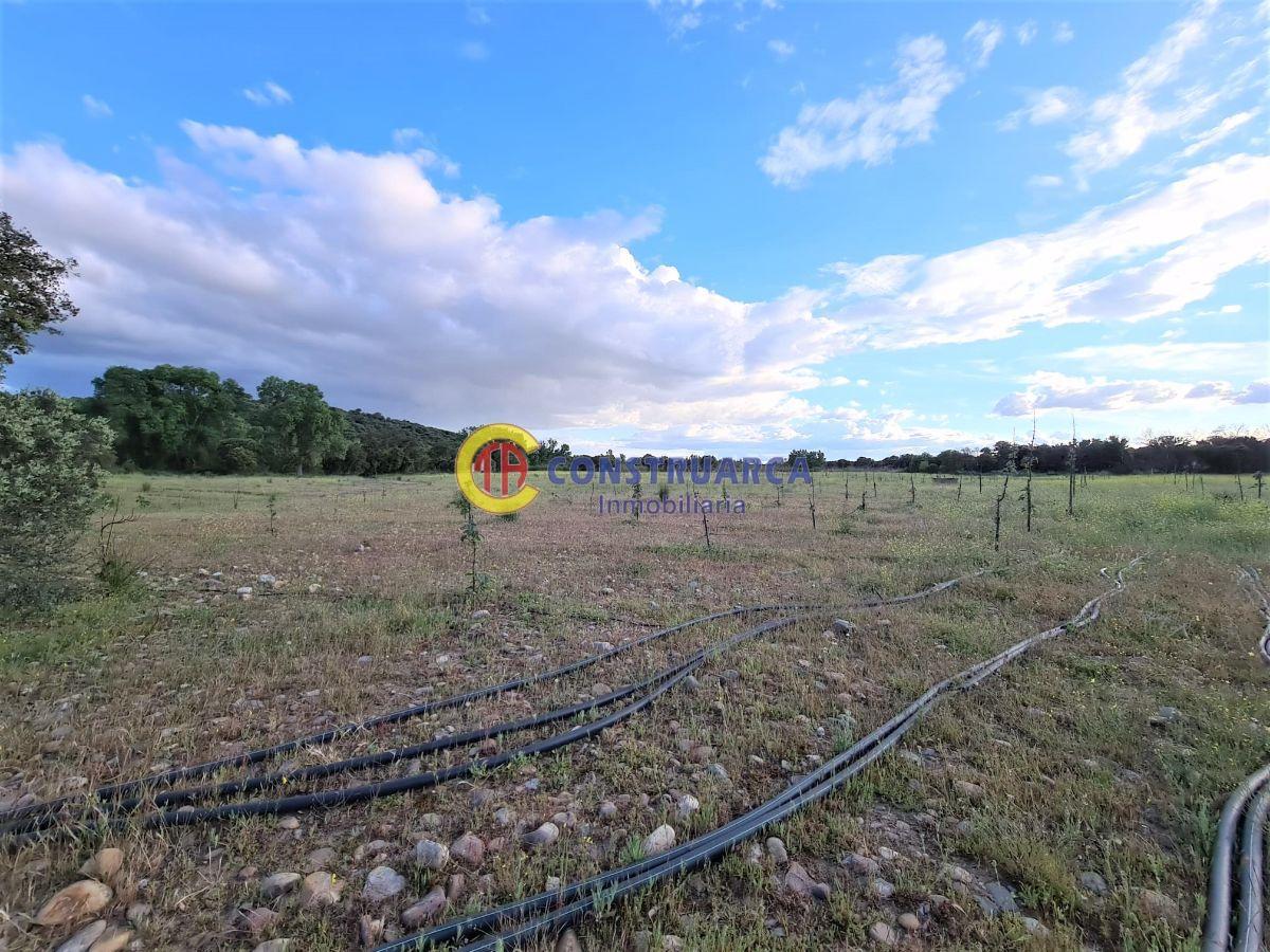 For sale of rural property in Malpica de Tajo