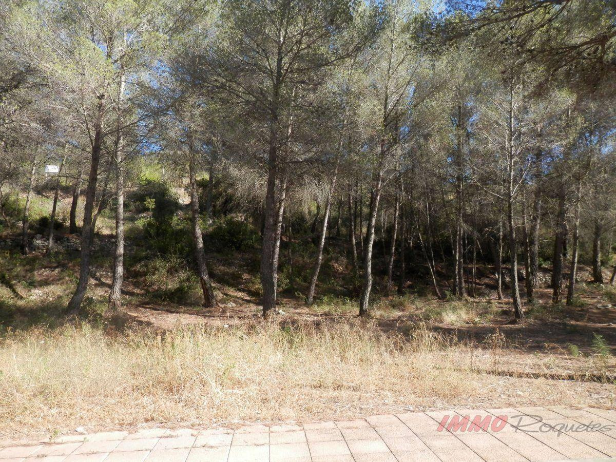 For sale of land in Sant Pere de Ribes