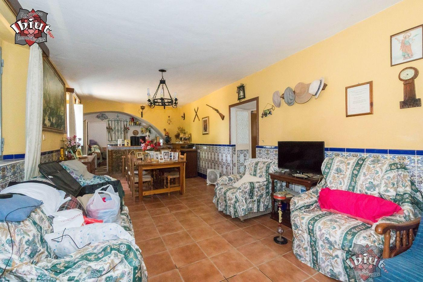 For sale of rural property in Carmona