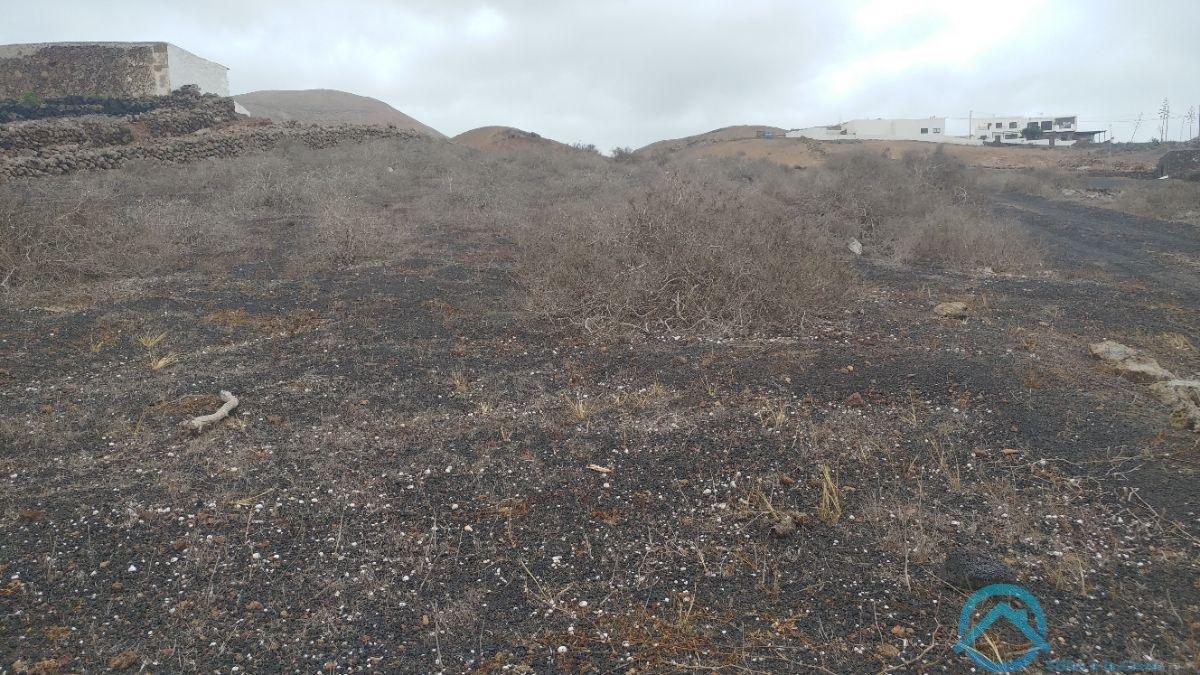 Vendita di terreno in Tinajo