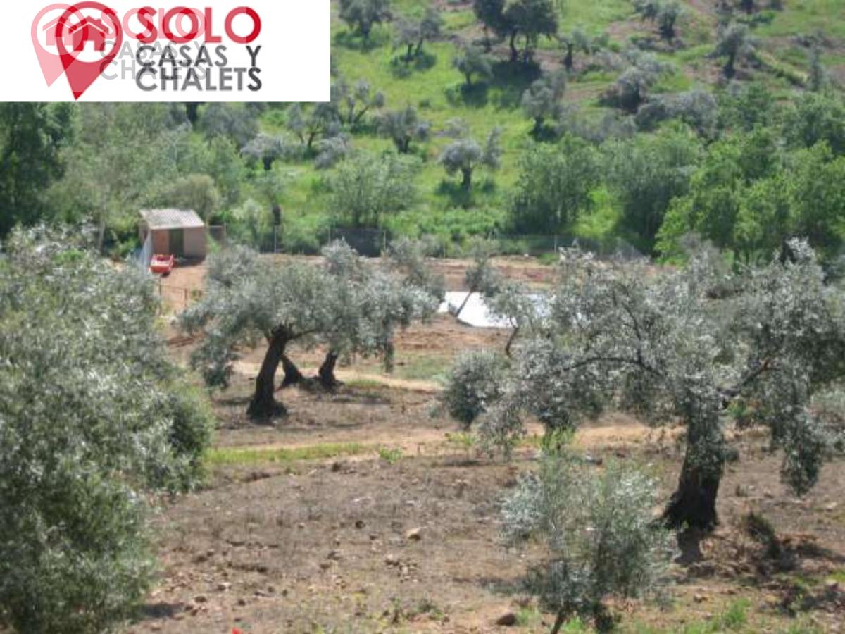 For sale of rural property in Córdoba