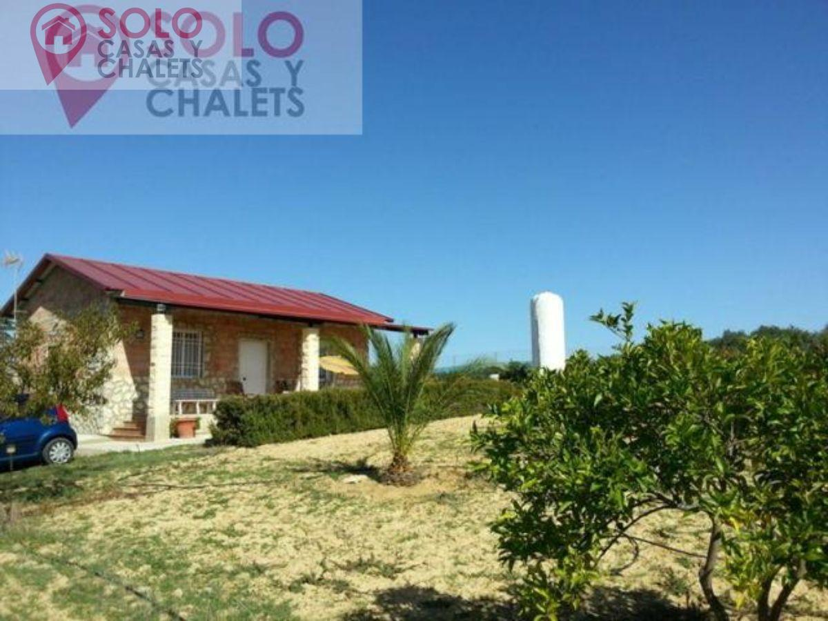 For sale of house in Montemayor