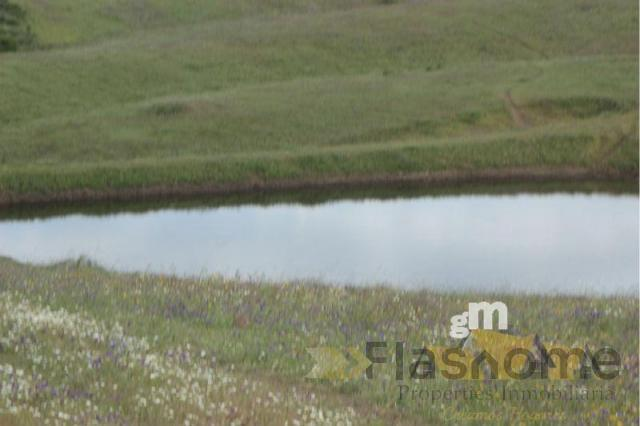For sale of rural property in Monesterio