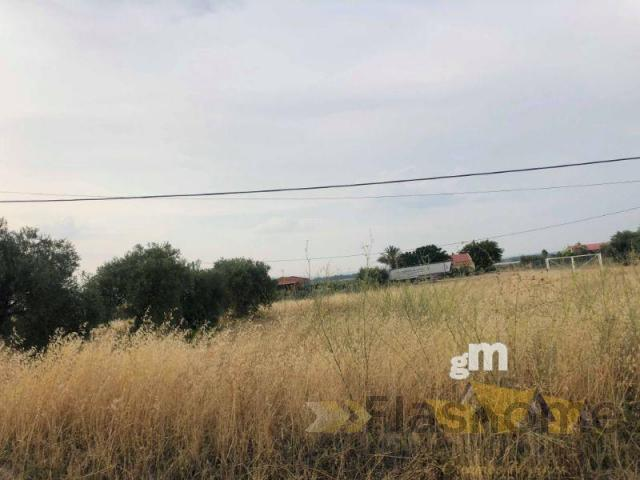 For sale of rural property in Don Benito