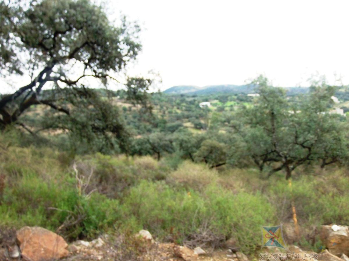 For sale of land in El Castillo de las Guardas