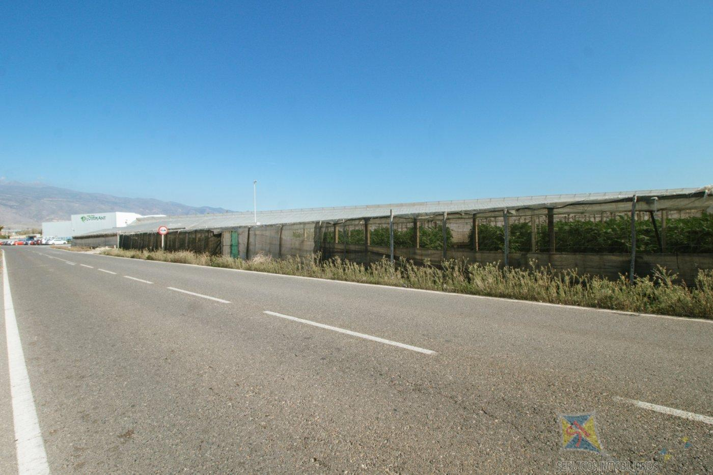 For sale of rural property in El Ejido
