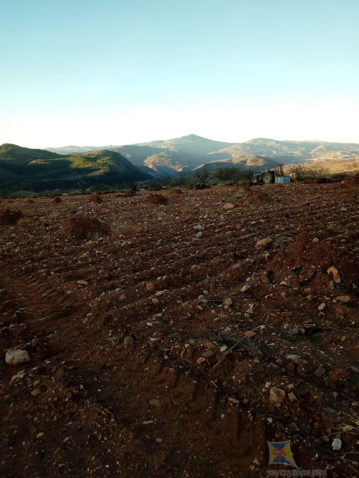 For sale of  in Ugíjar