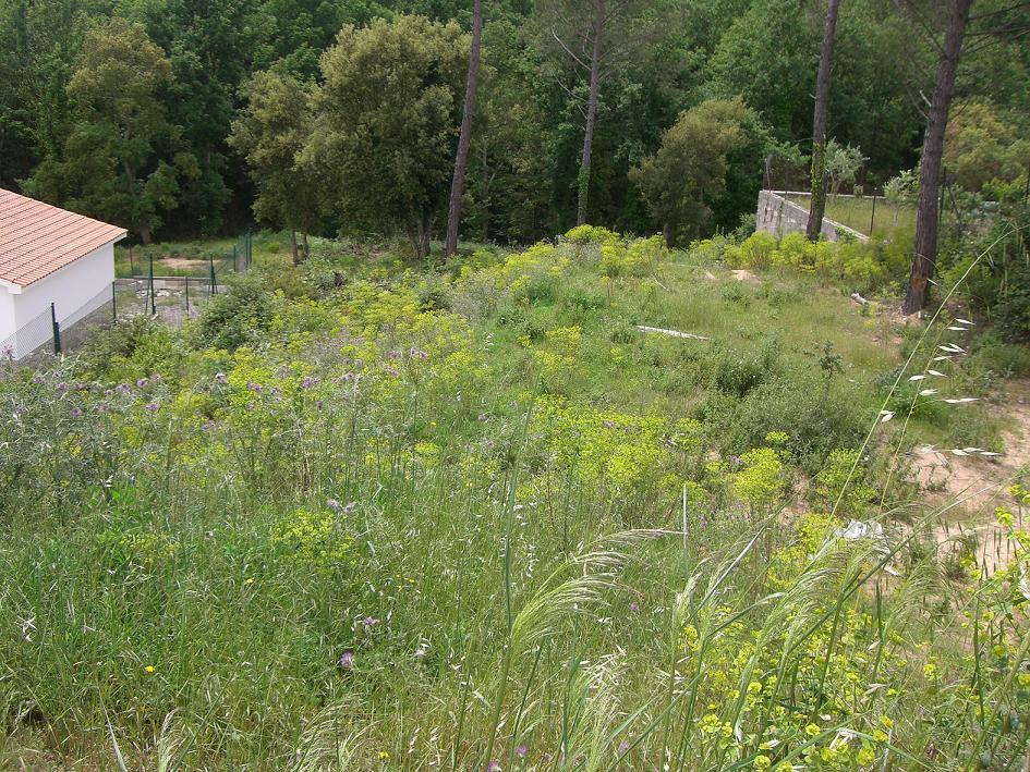 For sale of land in Tordera