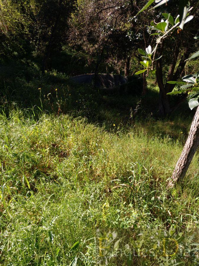 Venta de terreno en Tordera