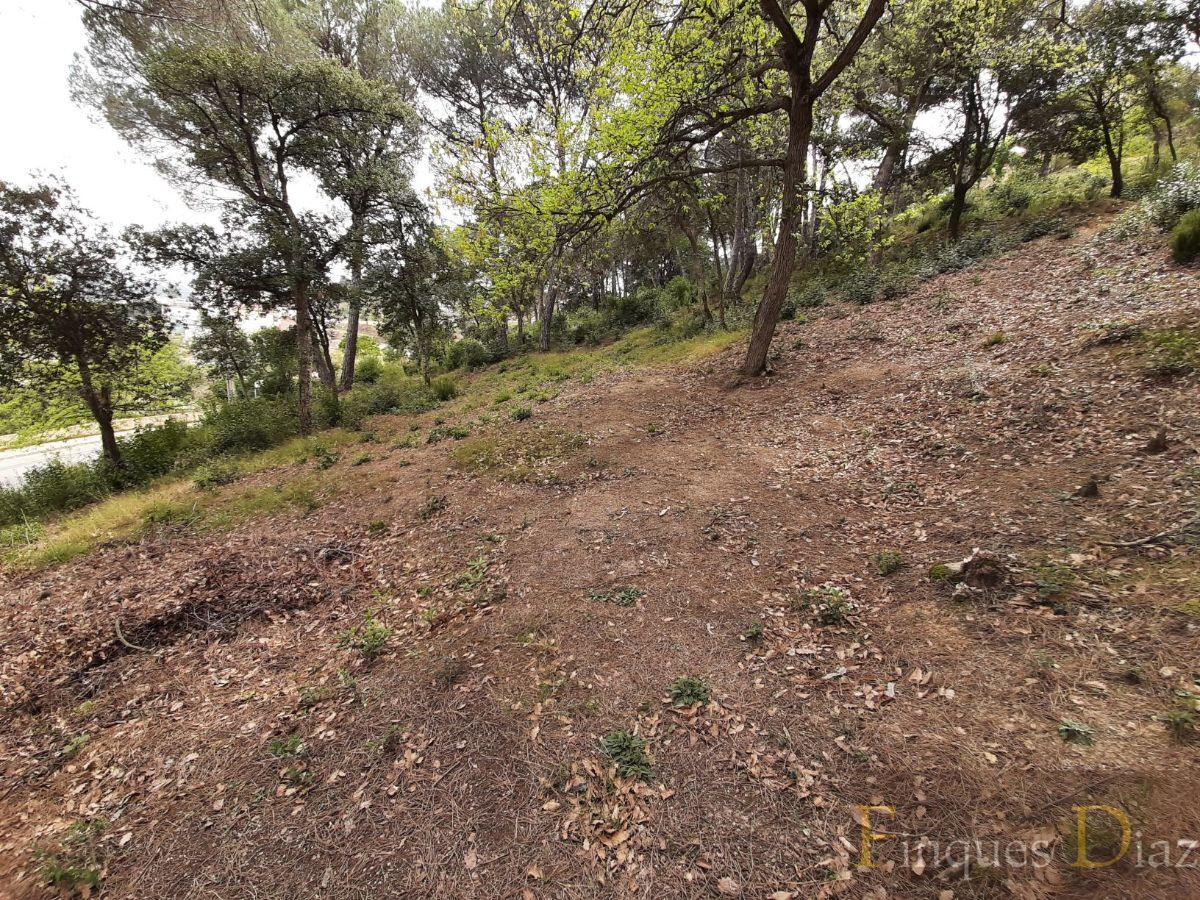 For sale of land in Fogars de la Selva
