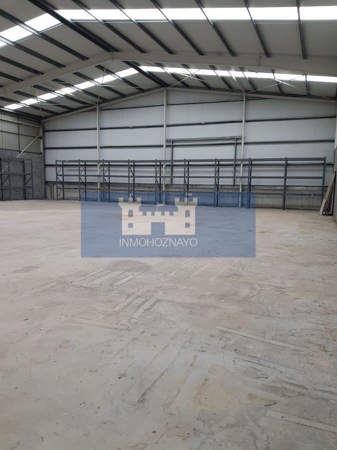 For sale of industrial plant/warehouse in El Astillero