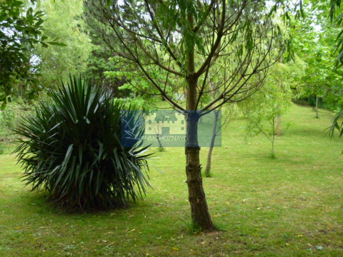 For sale of rural property in Villaescusa