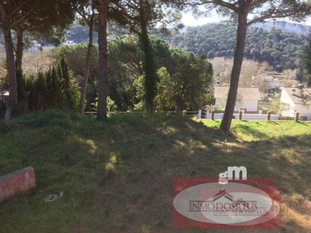 For sale of land in Dosrius