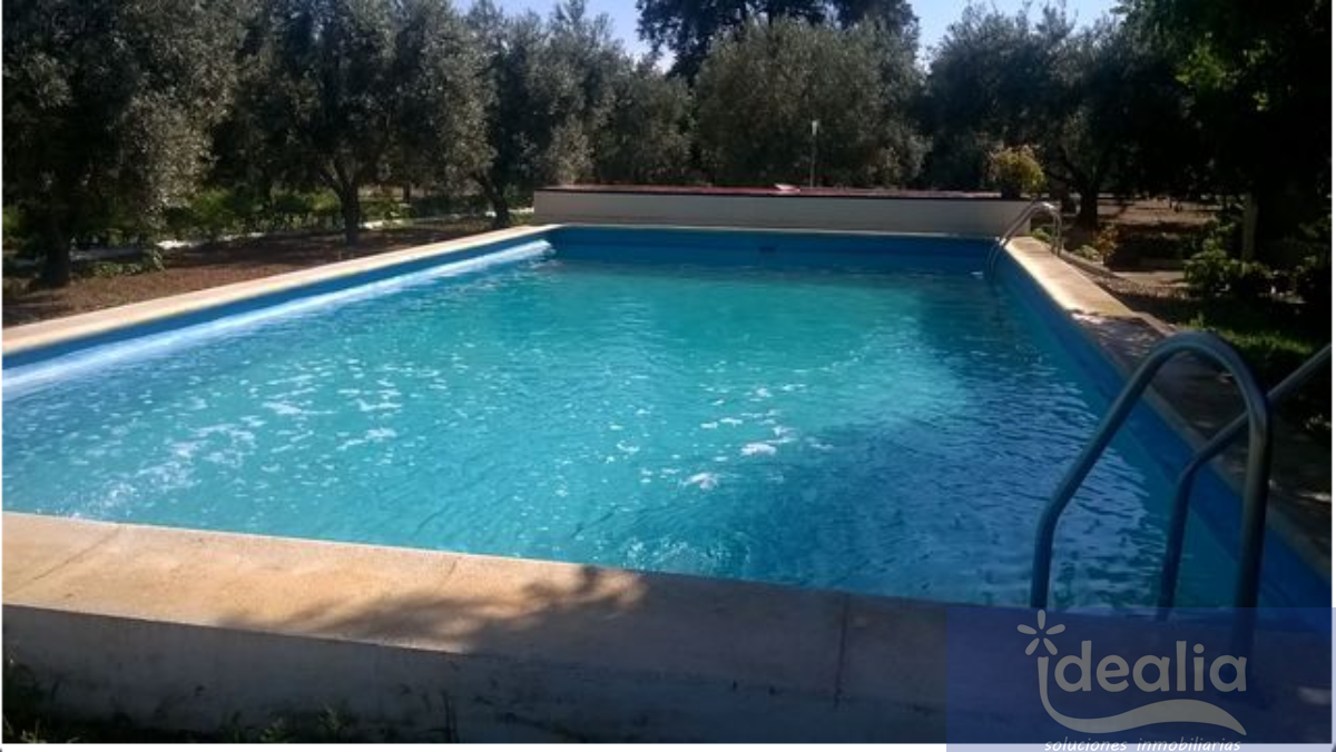 For sale of land in Utrera