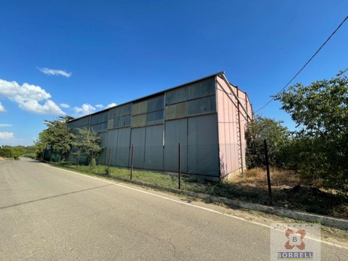 For rent of industrial plant/warehouse in Lleida