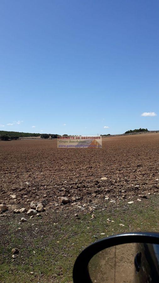 For sale of land in Chinchilla de Monte-Aragón