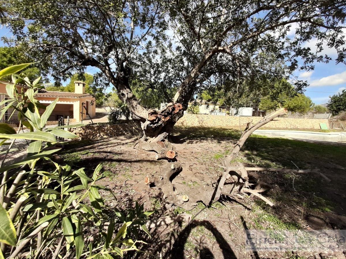 For sale of rural property in Benidorm