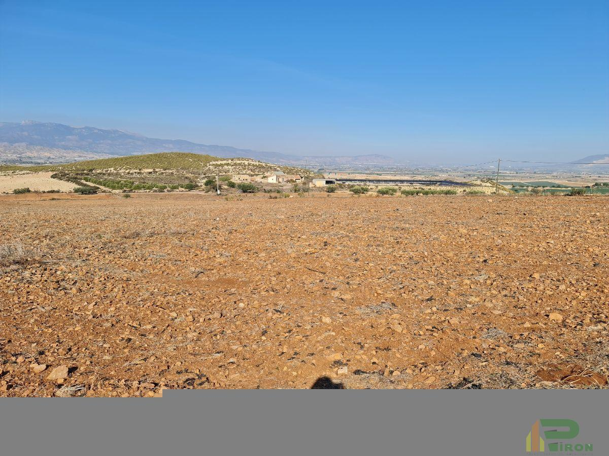 For sale of land in Totana