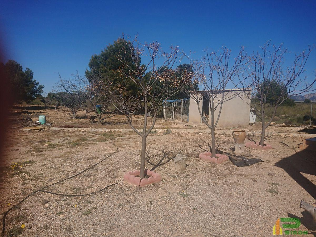 For sale of house in Aledo