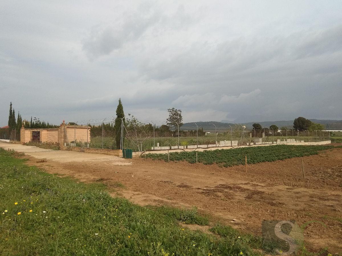 For sale of land in Bobadilla estación