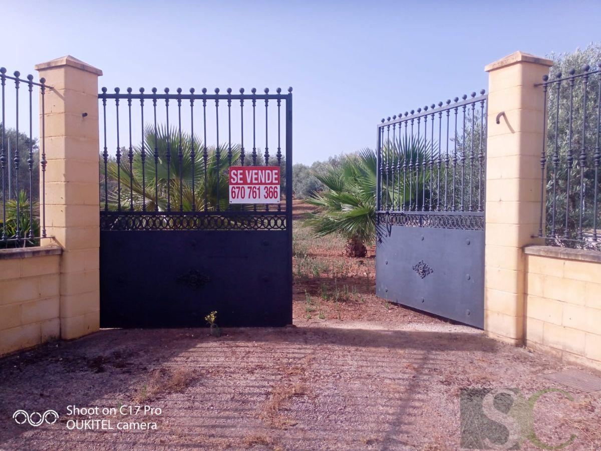 For sale of land in Sierra de Yeguas