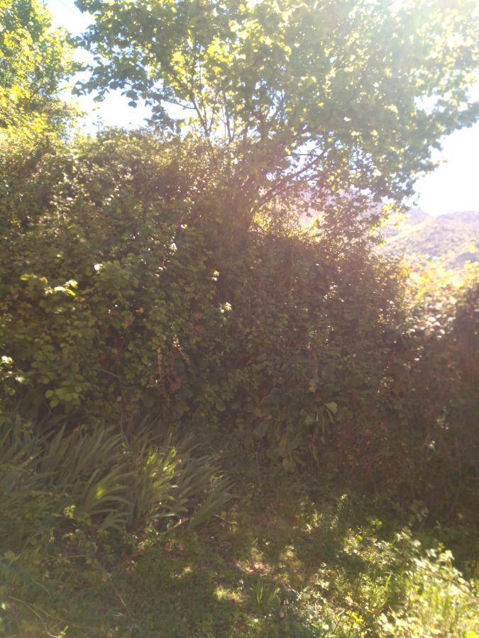 For sale of rural property in Cangas del Narcea Concejo